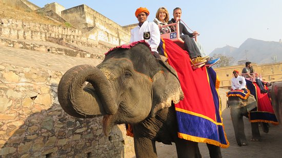 elephant-ride-up-to-the